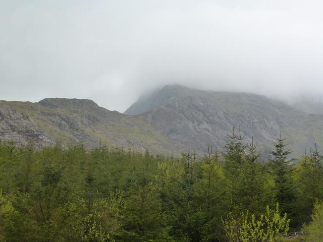 Moel Hebog in the mist