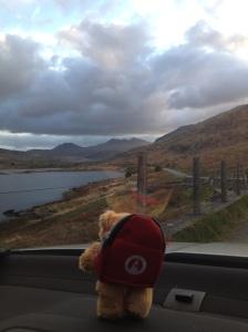 Wally the MR bear looking towards Snowdon