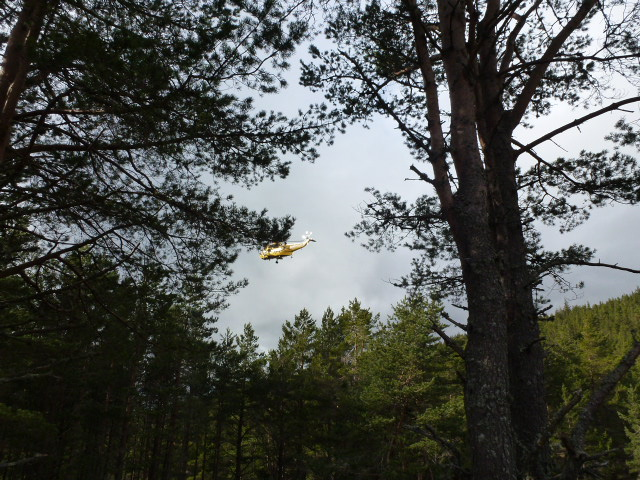 Sea King coming in to land at Glenmore Lodge.