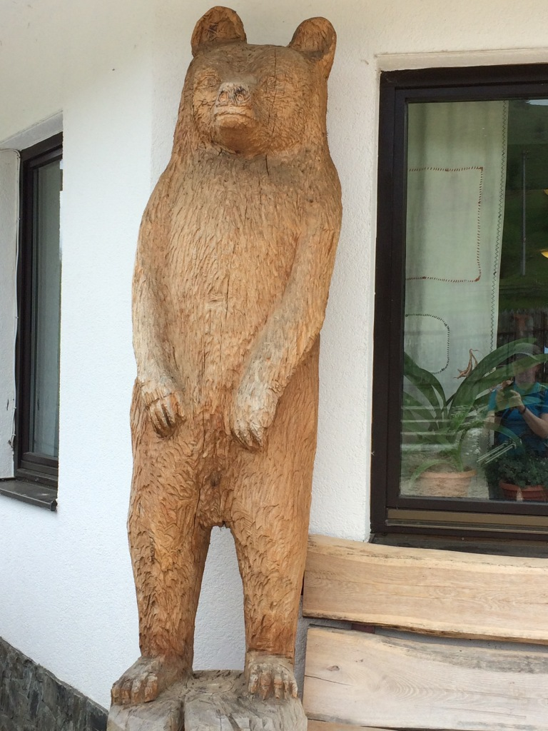 It's a bear!