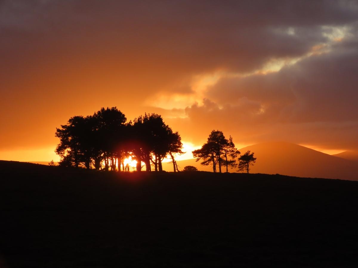 Northumberland October 2019
